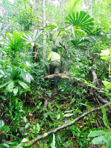 Anh Thanh leading the way through thick jungle
