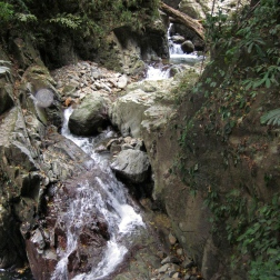 Mountain stream in Bach Ma