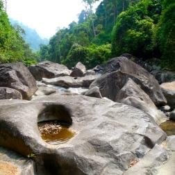 Rocky jungle terrain