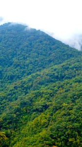Jungle-clad mountains of Xe Sap